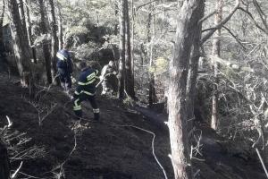Lesný požiar na Prečínskej skalke